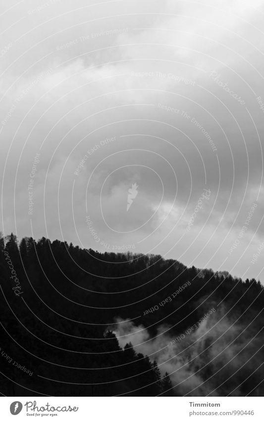 Bewölkt. Umwelt Natur Landschaft Himmel Wolken Herbst schlechtes Wetter Wald Hügel Schwarzwald dunkel natürlich schwarz weiß Gefühle Schwarzweißfoto