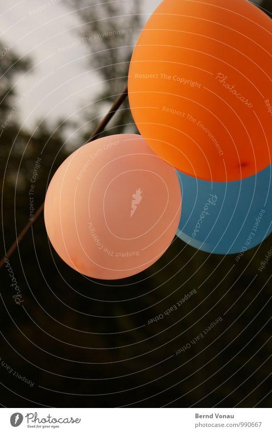 mattleen, matteo und matthias Spielen blau grün orange rosa Luftballon Feste & Feiern Dekoration & Verzierung Wind Seil rund Gummi Baum alt mehrfarbig Himmel