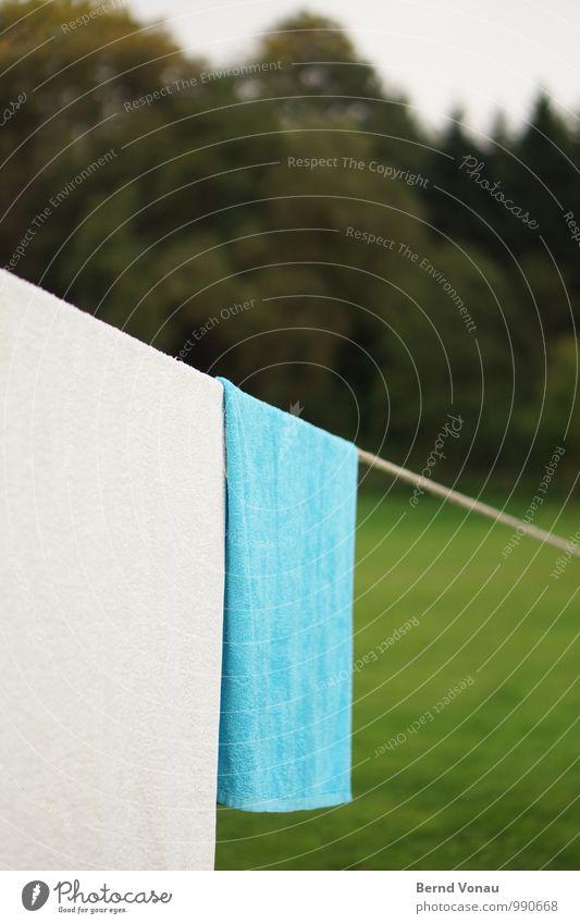 abhängen Camping Seil Gras Wald nass blau grün Weisheit Geometrie Handtuch trocknen Rasen Sportrasen flach Neigung Wäsche Teilung Natur Frottée abwärts Linie