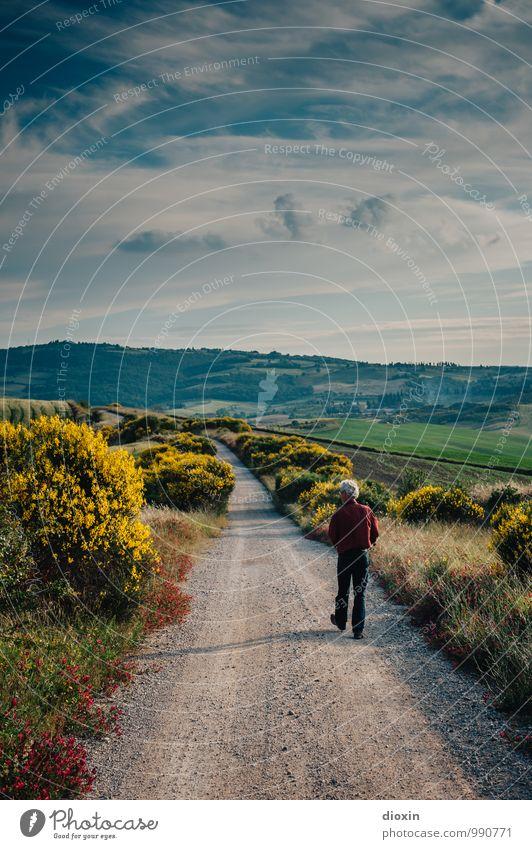 900 | as time. goes by Mensch Himmel Natur Ferien & Urlaub & Reisen Mann Pflanze Sommer Landschaft Wolken Ferne Umwelt Erwachsene Wege & Pfade Freiheit maskulin