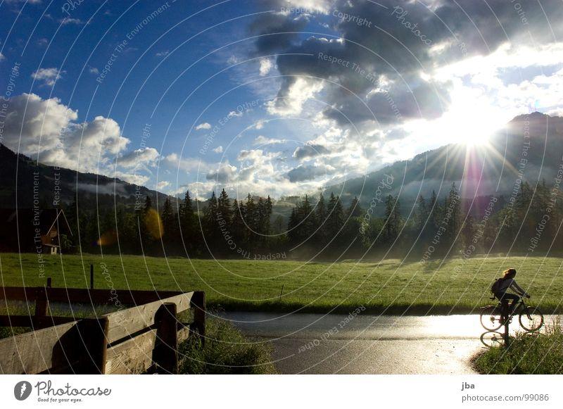 frühmorgens Sonnenaufgang Beleuchtung Morgen frisch Physik Wolken nass feucht Regen Zaun Holzbrett Tanne Wiese Scheune Fahrrad Gras lang Stimmung Sommer Wärme
