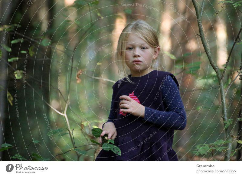 Träumerin feminin Kind 1 Mensch 3-8 Jahre Kindheit Herbst Schönes Wetter Pflanze Baum Sträucher Grünpflanze Wildpflanze Wald träumen warten Farbfoto