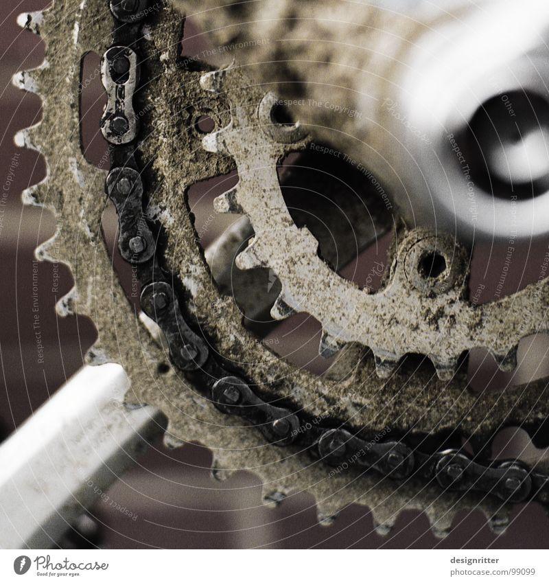 offroad 2 Fahrrad Gelände Fußweg Schlamm spritzen Pedal Fett Funsport Moutainbike cross dreckig Rahmen Kettenblatt Zahnrad Erdöl ölig Freude Außenaufnahme