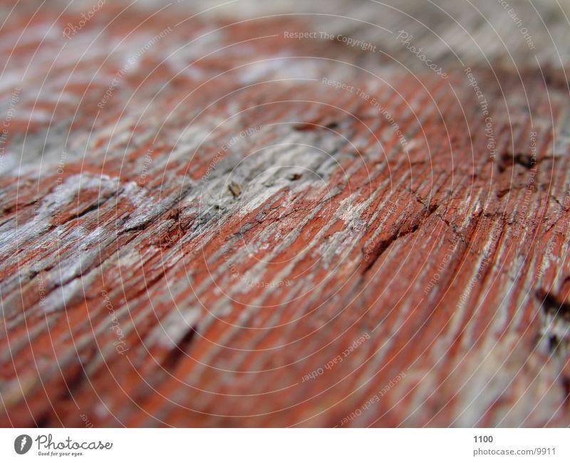 makro rot Holz nah Dinge