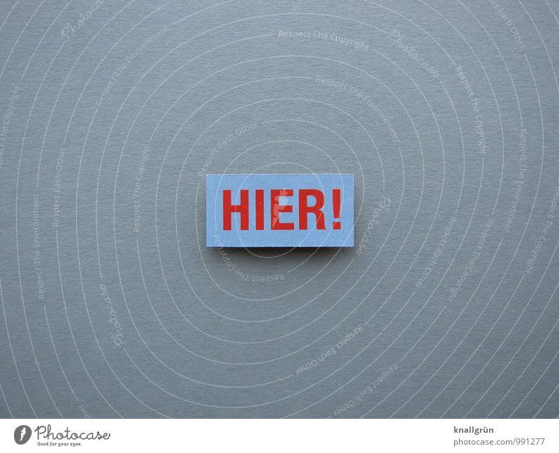 HIER! rot grau Schilder & Markierungen Schriftzeichen Beginn Kommunizieren Zeichen planen eckig Hinweis