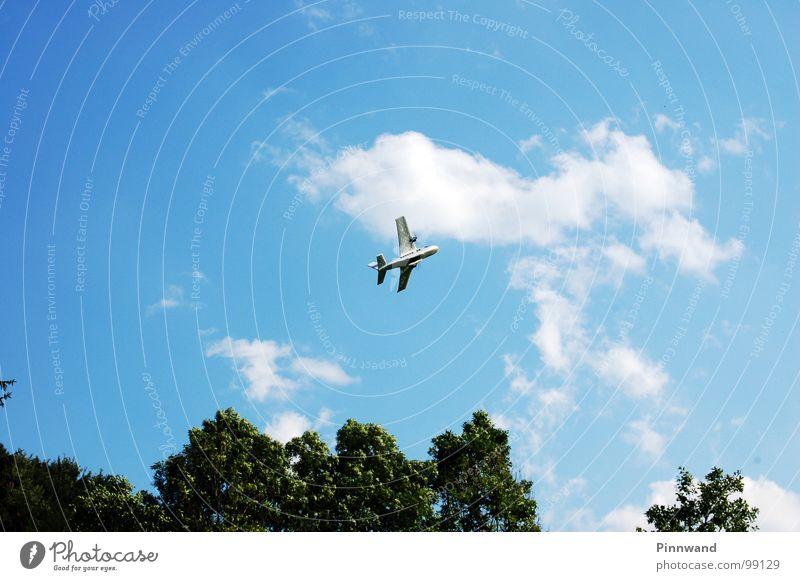tiefflug Himmel Baum Wolken Freiheit Garten Horizont Wind Freizeit & Hobby hoch Flugzeug Erfolg gefährlich Flügel bedrohlich Brille fallen