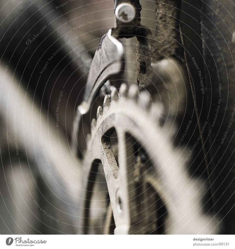 offroad 3 Fahrrad Gelände Fußweg Schlamm spritzen Pedal Fett Funsport Moutainbike cross dreckig Rahmen Kettenblatt Zahnrad Erdöl ölig Freude Außenaufnahme