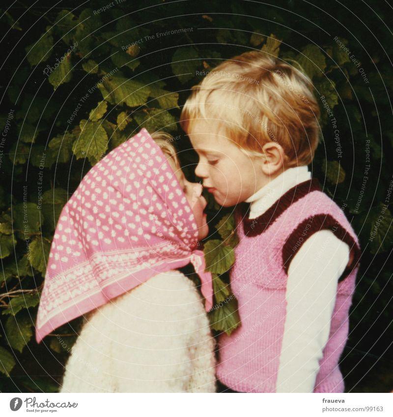 kiss me brother Mensch Kind Familie & Verwandtschaft Mädchen alt Blatt Liebe Junge blond rosa nah Küssen Vertrauen Amerika Bruder