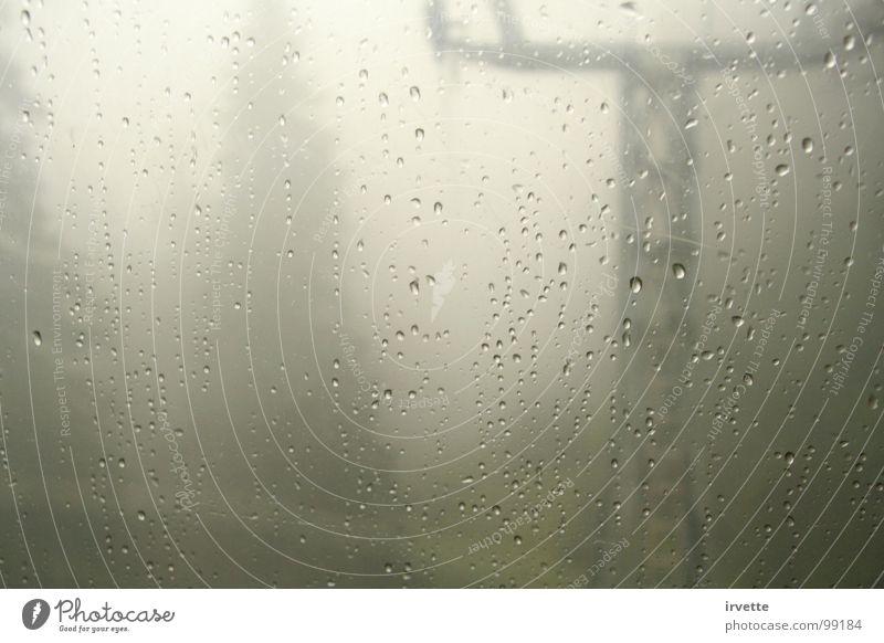 Fog Herbst gefährlich Fahrstuhl Holzmehl