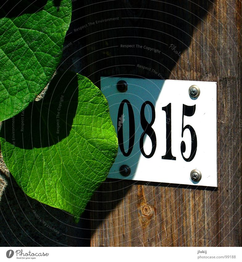 No Comment 08 15 Ziffern & Zahlen Standard abfällig Aussage Nagel Blatt Gefäße Zaun Redewendung Sprichwort Maschinengewehr normal Durchschnitt Suche finden