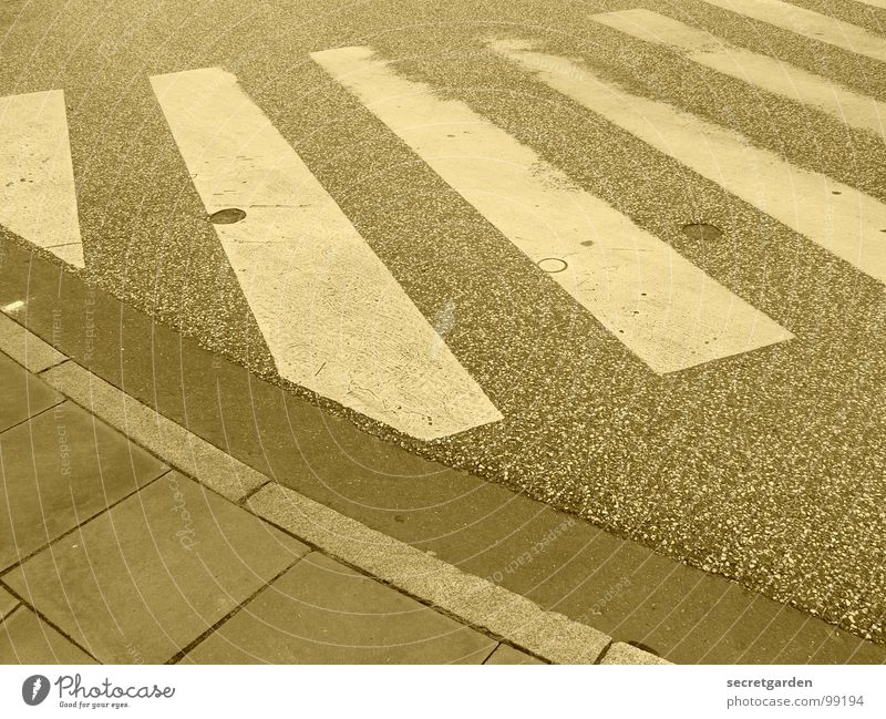 zebra weiß gelb Straße Farbe Wege & Pfade hell Raum gehen Schilder & Markierungen verrückt Asphalt Streifen Bürgersteig Symbole & Metaphern