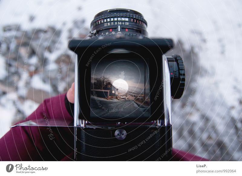 neues Spielzeug Sammlerstück Fotokamera Arbeit & Erwerbstätigkeit genießen Freude Zufriedenheit Fotografieren analog Analogfotografie Hasselblad Mittelformat