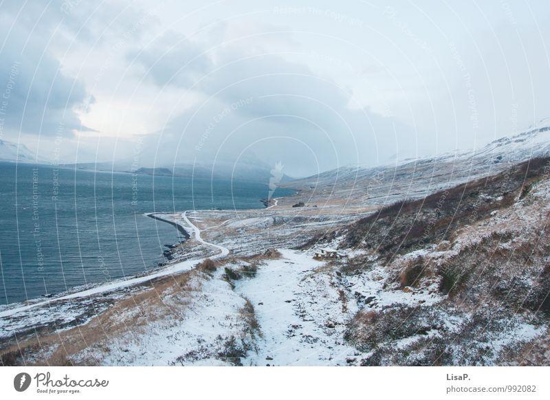 kurvig Umwelt Natur Landschaft Pflanze Winter Klima Hügel Berge u. Gebirge Küste Island stagnierend ruhig Kurve Straße Wolken Farbfoto Außenaufnahme