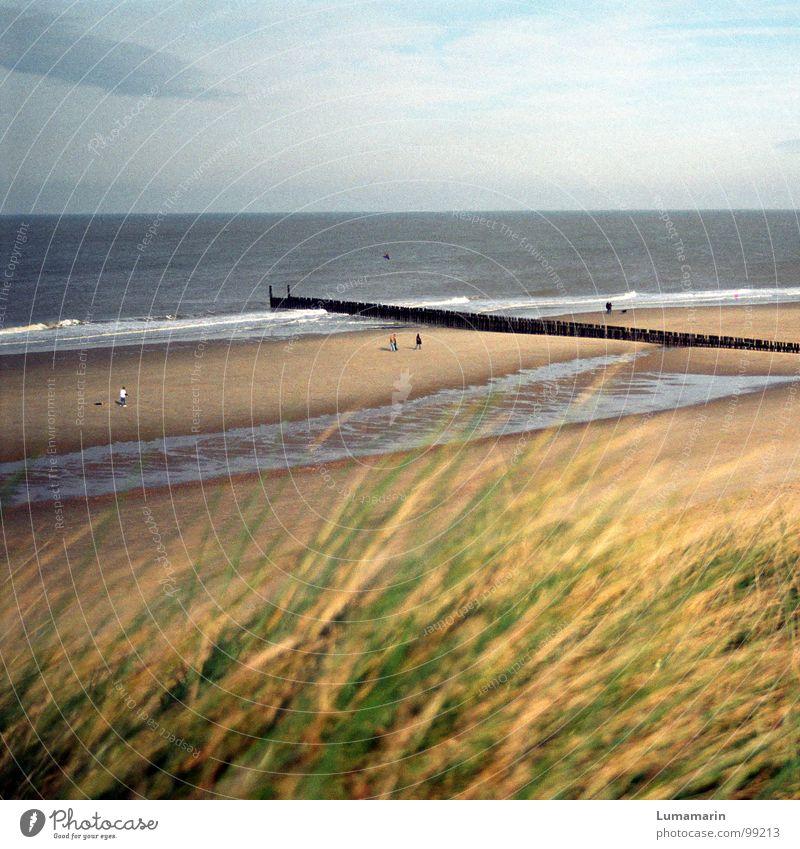 Ruhesaison schön Erholung ruhig Ferien & Urlaub & Reisen Ferne Sommer Strand Meer Wellen Mensch Wasser Himmel Horizont Herbst Wetter Wind Wärme Gras Küste