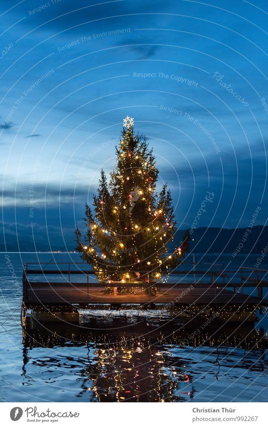 Weihnachtsbaum am Wörthersee Natur blau Weihnachten & Advent grün Wasser Erholung rot Wolken Winter Berge u. Gebirge Umwelt Feste & Feiern Schwimmen & Baden See Stimmung träumen