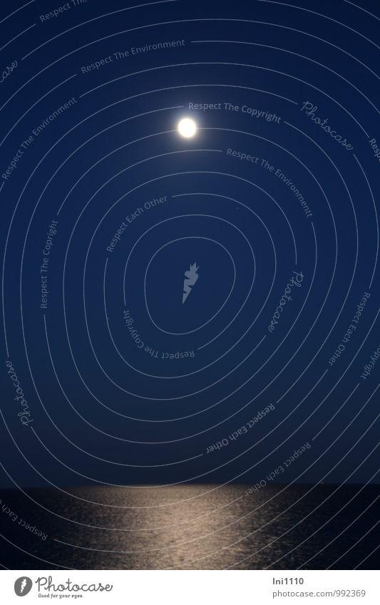 Vollmond Meer Natur Luft Wasser Himmel Wolkenloser Himmel Nachthimmel Horizont Mond Sommer Strand Ostsee Insel beobachten glänzend leuchten Blick träumen blau