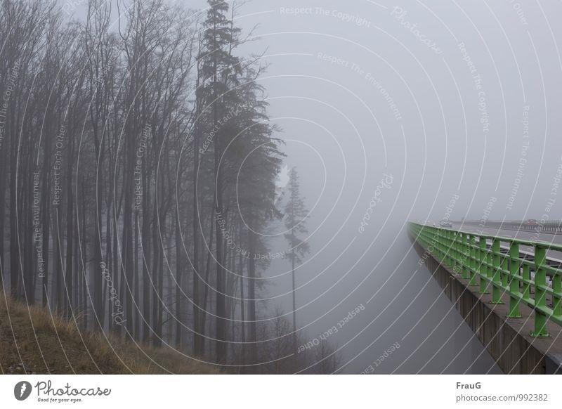 Nebelfahrt Himmel Herbst Wetter Baum Wald Berghang Brücke Bauwerk Autobahnbrücke Brückengeländer Straßenverkehr Autofahren PKW Beton Metall grau grün gefährlich