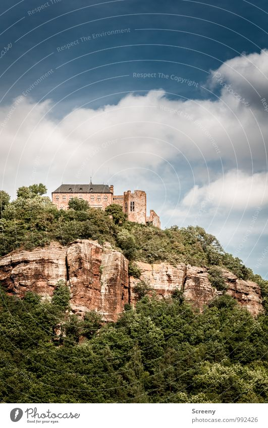 Erhaben Ferien & Urlaub & Reisen Tourismus Ausflug Sightseeing Sommer wandern Landschaft Himmel Wolken Schönes Wetter Sträucher Felsen Eifel Nideggen Stadt