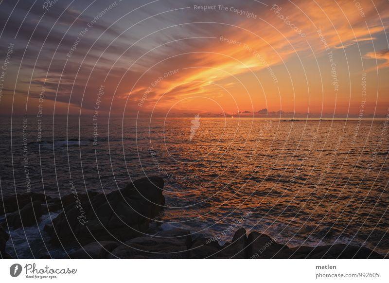 Tiefdruckfront Landschaft Himmel Wolken Horizont Sonne Sonnenaufgang Sonnenuntergang Sonnenlicht Wetter Schönes Wetter schlechtes Wetter Felsen Küste Meer blau