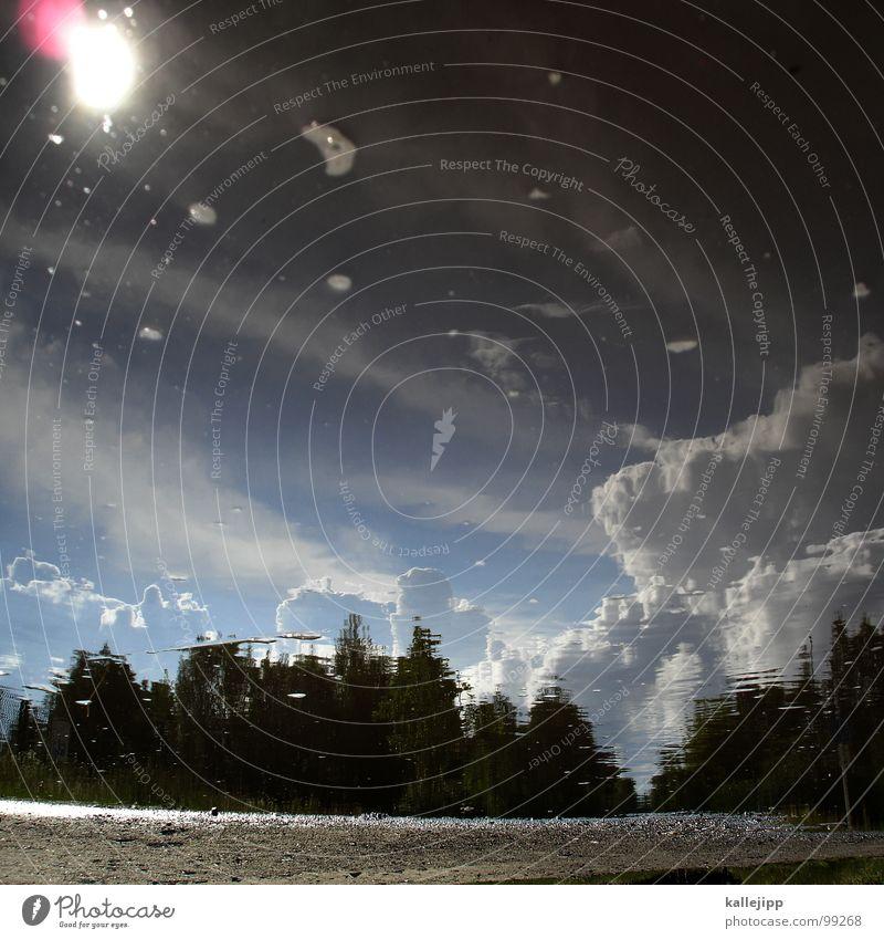 second life Pfütze Unwetter Sturm Reflexion & Spiegelung Wolken Luft Kumulus Wald Baum Gewitterwolken Regen Hagel Wasser Himmel Klima Klimawandel Niederschlag