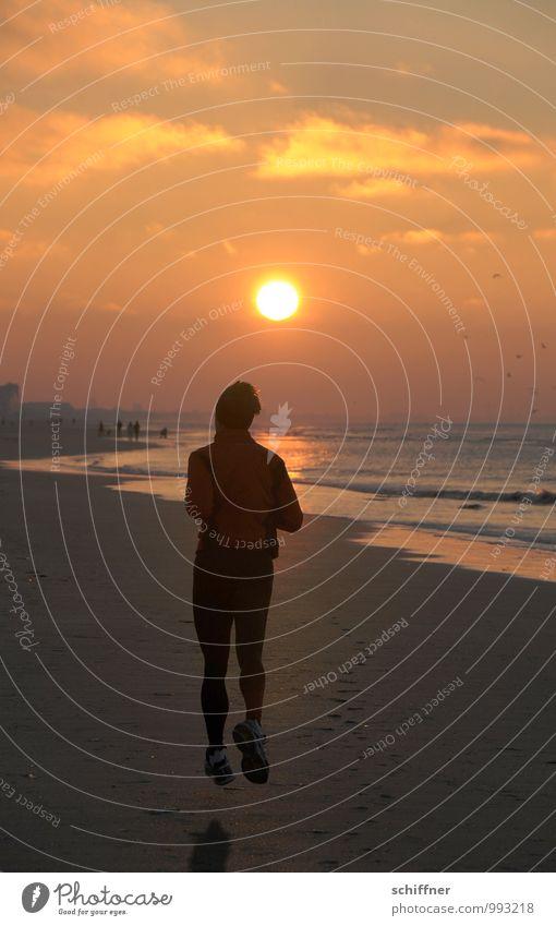 Belgischer Spätsport Mensch maskulin Mann Erwachsene 1 30-45 Jahre laufen rennen Joggen Strand Meer Küste Sonnenuntergang Schweben Abend Abendsonne Belgien