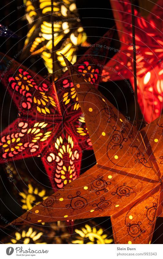 Wintersterne Basteln Weihnachten & Advent Lampe Feste & Feiern Dekoration & Verzierung Kitsch Krimskrams Zeichen Stern Gefühle Stimmung Warmherzigkeit
