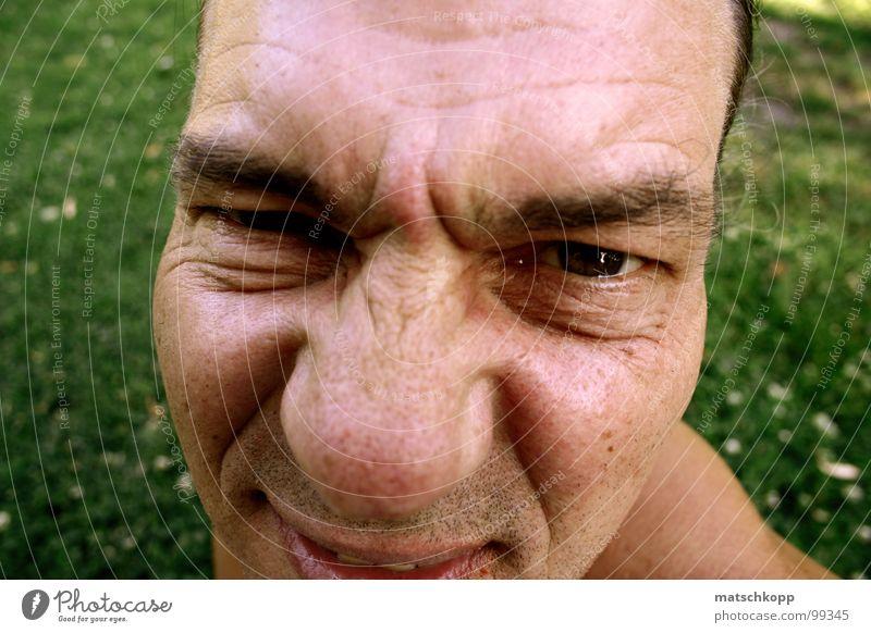 Kartoffelnase Wiese grün Gras Liegewiese Park Knollnase Knolle skeptisch Vogelperspektive Grunzen Augenbraue Perspektive Dreitagebart Augenfarbe Schulter Mann