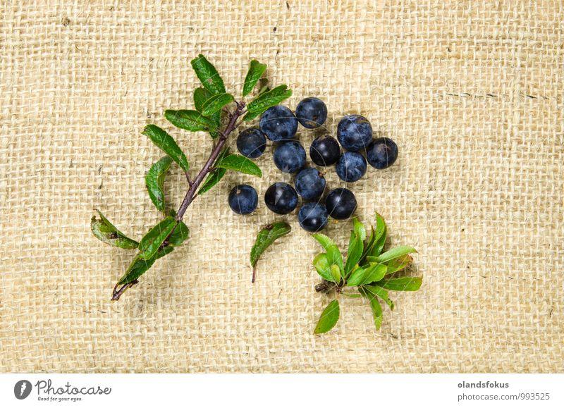 Schlehdornbeeren Frucht Dessert Vegetarische Ernährung Natur Pflanze Herbst Blatt frisch natürlich wild blau grün schwarz Hintergrund Beeren Schwarzdorn Ast