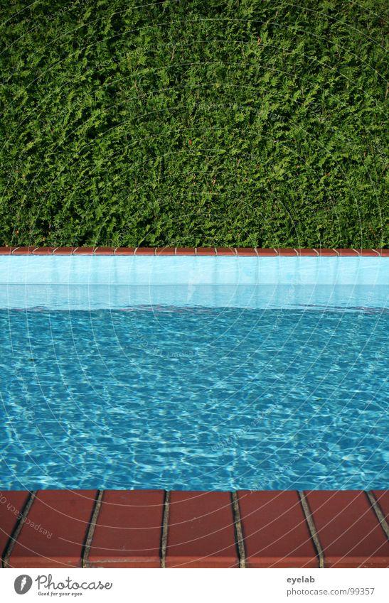 4:59 MEZ...ERSTER !....GUTEN MORGEN ! Schwimmbad Hecke Sommer Ferien & Urlaub & Reisen Wohnung Ecke Chlor Umwälzung nass feucht Physik Kühlung grün leer privat