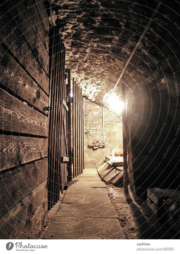 ganz unten alt Stein Häusliches Leben Tunnel Denkmal historisch Keller Altstadt Kellergewölbe Naturstein Subvention Denkmalschutz Fachwerkhaus Tonnengewölbe