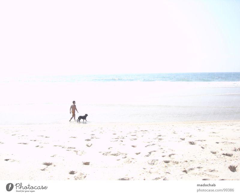 MR. GASSI & FRIENDS Mensch Mann Wasser weiß Sonne Meer Sommer Strand Ferien & Urlaub & Reisen Tier Bewegung Hund Wärme Sand Luft hell