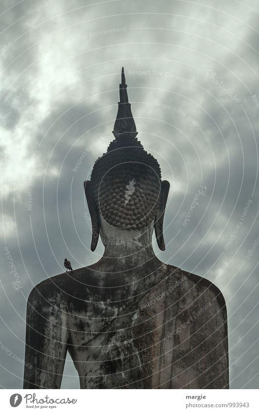 Die große Stein - Statue eines Buddha von der Rückseite mit einem Vogel auf der Schulter Kunst Kunstwerk Skulptur Himmel Wolken Gewitterwolken schlechtes Wetter