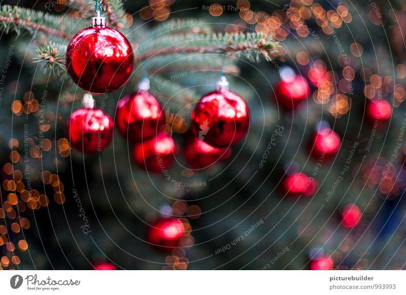 Christbaumkugeln Weihnachten & Advent grün Baum rot Winter Feste & Feiern Stimmung Wohnung glänzend Weihnachtsbaum Schwache Tiefenschärfe