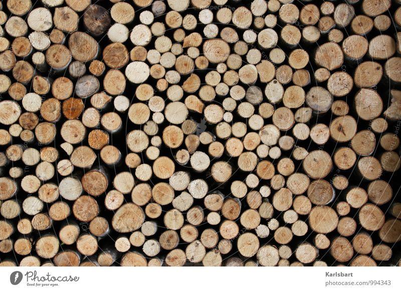 Vor der Hütte Lifestyle Reichtum Stil sparen harmonisch Winter Häusliches Leben Wohnung Gartenarbeit Forstwirtschaft Waldarbeiter Wirtschaft Landwirtschaft
