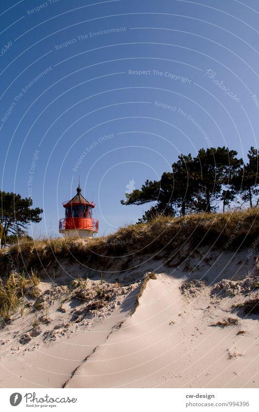 Urlaubsgrüße von der Insel Ferien & Urlaub & Reisen Ausflug Ferne Sommerurlaub Strand Natur Landschaft Pflanze Erde Sand Wolkenloser Himmel Sonnenlicht Frühling