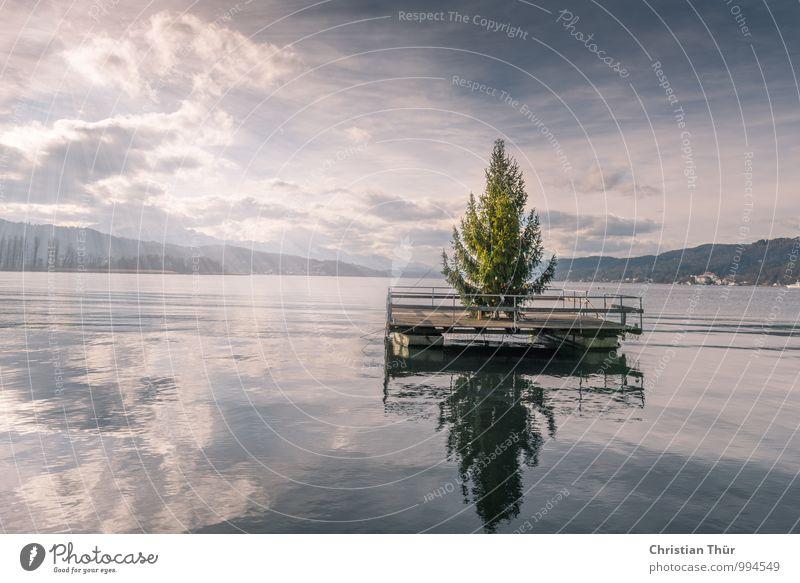 Frohe Weihnachten und eine guten Rutsch Pflanze Weihnachten & Advent Wasser Erholung ruhig Strand Winter kalt Berge u. Gebirge Gefühle Feste & Feiern See