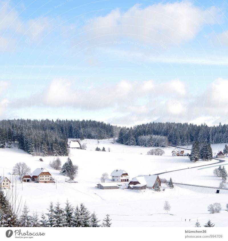 Hüttengaudi | In welcher Hütte steigt die Party? Himmel Natur Ferien & Urlaub & Reisen Erholung Landschaft Haus Winter Wald kalt Berge u. Gebirge Schnee