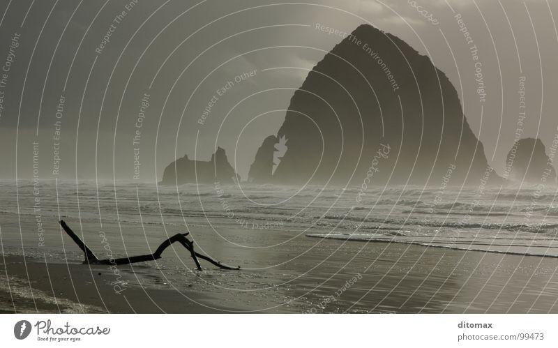 Haystack Branch Natur Wasser schön Strand Nebel USA Holzmehl Oregon