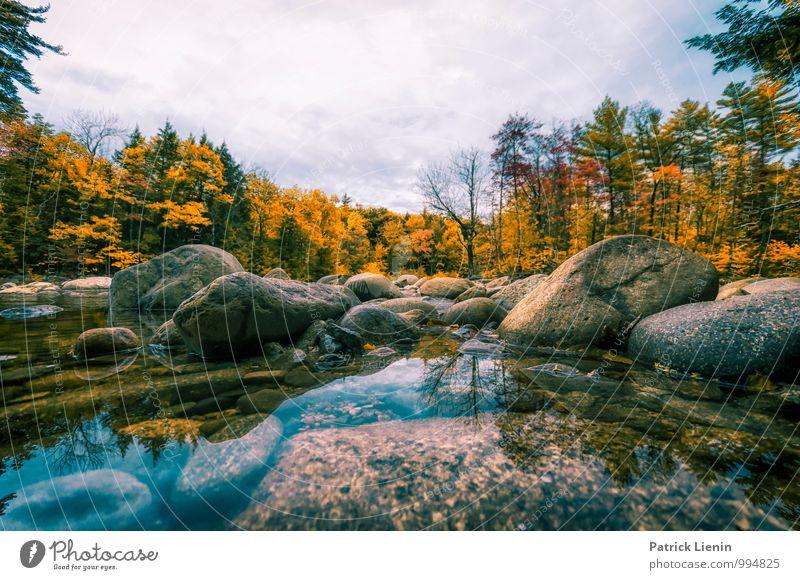Herbst in New Hampshire Himmel Natur Ferien & Urlaub & Reisen Pflanze Baum Landschaft Einsamkeit Wolken Ferne Wald Berge u. Gebirge Umwelt Freiheit Tourismus