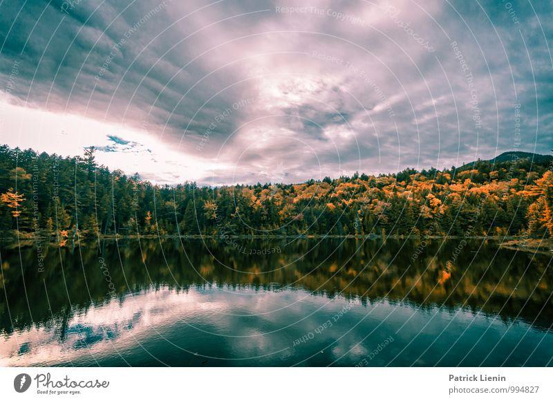 Herbst in Neuengland Himmel Natur Pflanze Erholung Landschaft ruhig Ferne Wald Berge u. Gebirge Umwelt Lifestyle Freiheit Zufriedenheit Wetter Tourismus