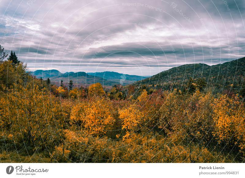 White Mountains in New Hampshire Wohlgefühl Zufriedenheit Sinnesorgane Erholung ruhig Ferien & Urlaub & Reisen Ausflug Abenteuer Ferne Freiheit Expedition
