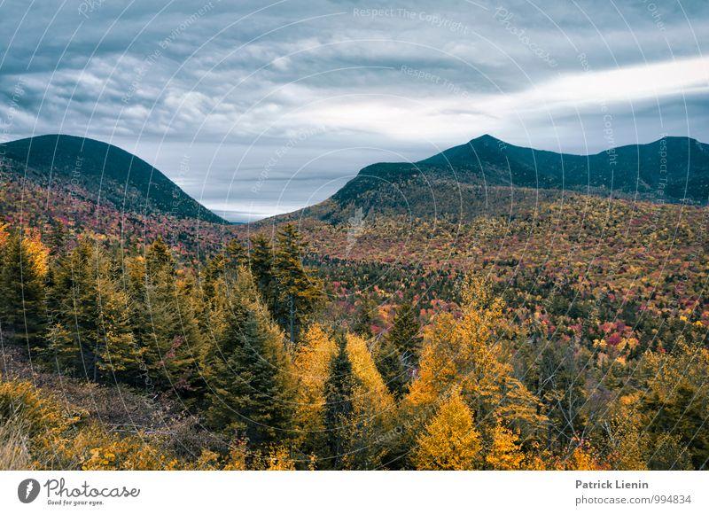Herbstlich Himmel Natur Pflanze Sommer Erholung Landschaft ruhig Wolken Ferne Berge u. Gebirge Umwelt Leben Freiheit Zufriedenheit Wetter