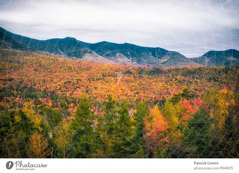 Herbst in Neuengland Himmel Natur Ferien & Urlaub & Reisen Pflanze Baum Erholung Landschaft Wolken ruhig Ferne Wald Berge u. Gebirge Umwelt Freiheit