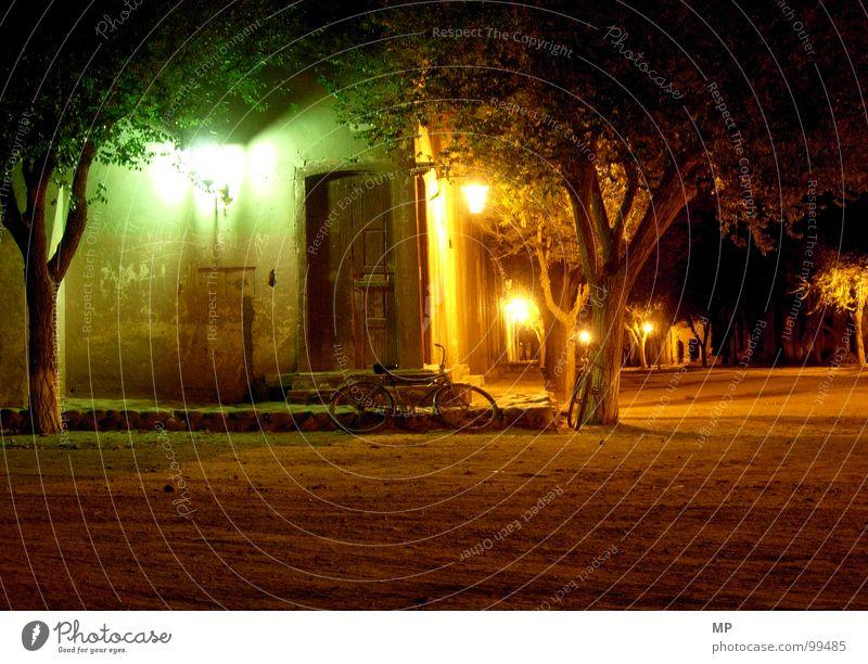 Der schlafende Bote Baum Einsamkeit ruhig Lampe Stimmung Nacht Frieden Dorf Laterne Verkehrswege Müdigkeit friedlich verschlafen