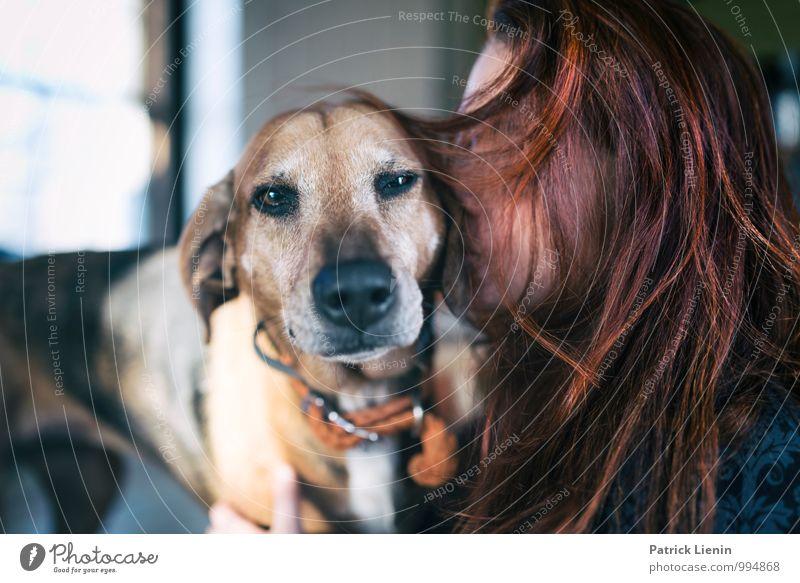 Tierliebe Hund Mensch Frau Jugendliche Junge Frau Erholung ruhig 18-30 Jahre Umwelt Erwachsene Liebe feminin Haare & Frisuren Kopf Freundschaft