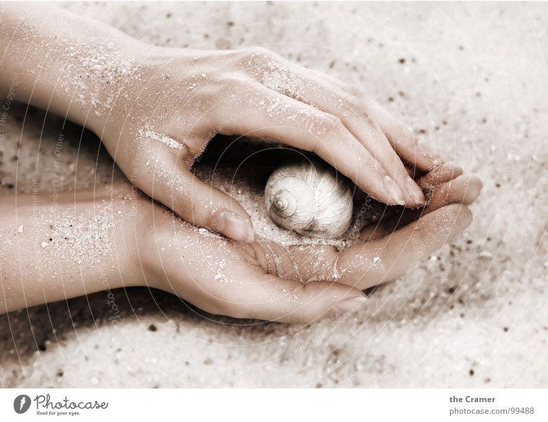Sanft Hand Physik Finger Haus Nagel Spirale Frau Vertrauen sanft Zahrt Schnecke Schutz Sand Wärme Kreis feemale
