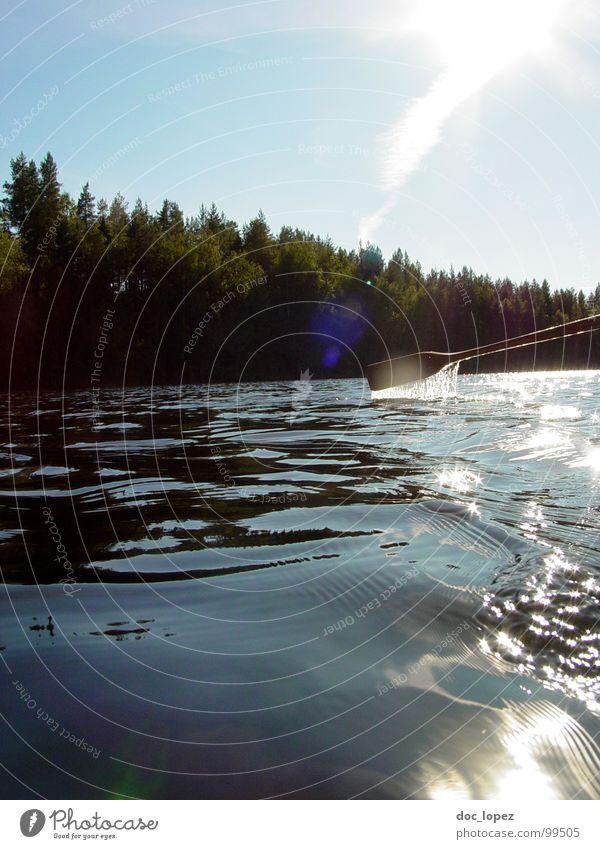 zum Beispiel letztes Jahr im Sommer See Wald Schifffahrt Meeresspiegel Ferien & Urlaub & Reisen Erholung ruhig Einsamkeit ausschalten Paddel Wasserfahrzeug