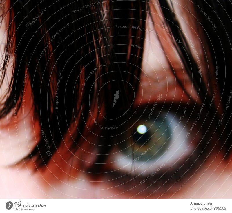 Ich habe dich im Auge Mensch Frau Jugendliche blau grün Meer schwarz Erwachsene Auge Leben Gefühle Gras Tod klein Haare & Frisuren Regen