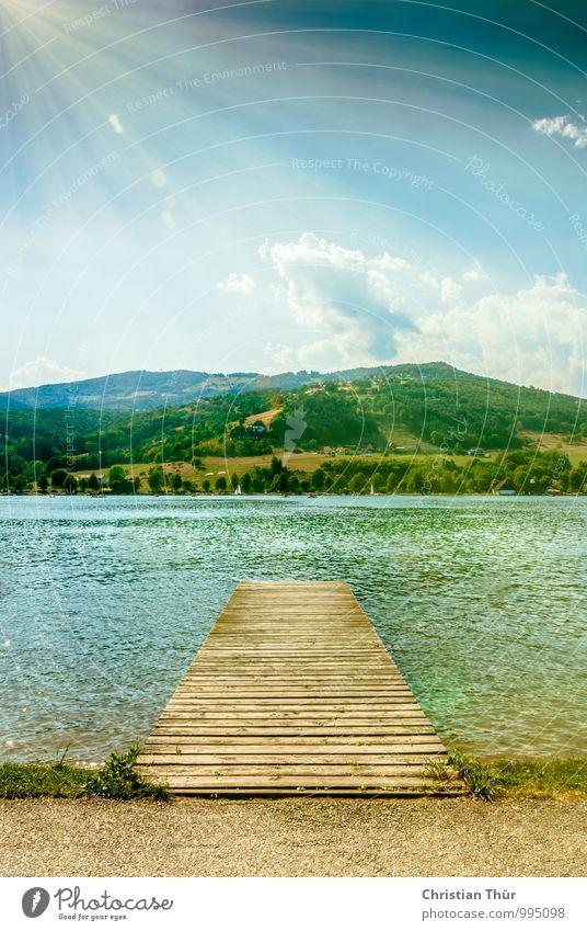 Badesteg Natur Ferien & Urlaub & Reisen Wasser Sommer Sonne Baum Erholung Landschaft ruhig Strand Wald Wärme Leben Gras Freiheit Schwimmen & Baden