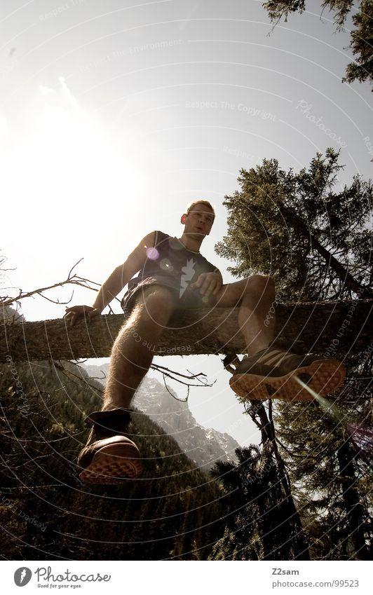 beine baumeln lassen Mensch Mann Himmel Baum Sonne Sommer Freude Ferien & Urlaub & Reisen Berge u. Gebirge Fuß Schuhe Beine Zufriedenheit sitzen unten Baumstamm